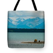 Alaskan Grizzly And Spring Cub Tote Bag