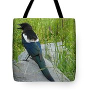Alaskan Magpie Tote Bag