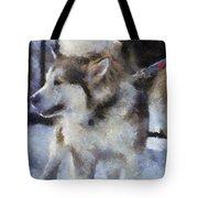 Alaskan Malamute Photo Art 09 Tote Bag