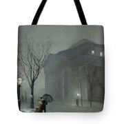 Albany In The Snow Tote Bag