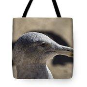 Albatross- Hawaii Tote Bag