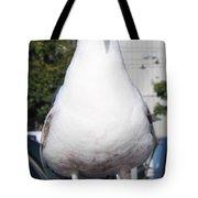 Albatross Tote Bag