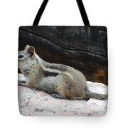 Albert Squirrel Tote Bag