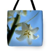 Albino Bluebells 2 Tote Bag