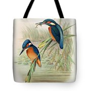 Alcedo Ispida Plate From The Birds Of Great Britain By John Gould Tote Bag