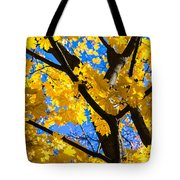 Alchemy Of Nature - Refining The Sungold Tote Bag