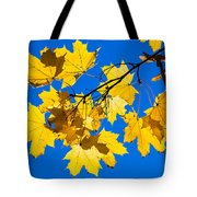 Alchemy Of Nature - Spray Tote Bag