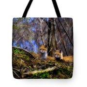 Alert Cute Kit Foxes Tote Bag