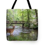 Alert Deer By Bridge In Cades Cove Tote Bag