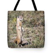 Alert Yellow Mongoose Tote Bag