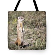 Alert Yellow Mongoose Tote Bag