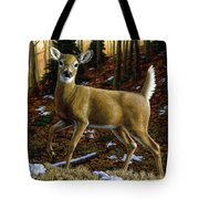 Whitetail Deer - Alerted Tote Bag by Crista Forest