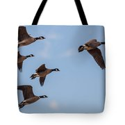Aleutian Geese Tote Bag