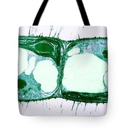 Algae Cell Division, Cylindrocapsa Tote Bag