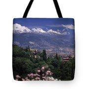 Alhambra View Tote Bag