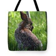 Alien Bunny Tote Bag