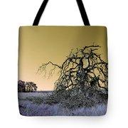 Alien Landscape 2 Tote Bag