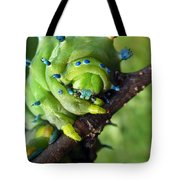 Alien Nature Cecropia Caterpillar Tote Bag