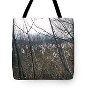 All Aglow Tote Bag