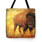 All But Forgotten  Tote Bag by Lianne Schneider