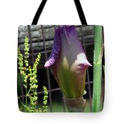 All Closed Up Tote Bag