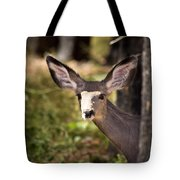 All Ears - Mule Deer Fawn - Casper Mountain - Casper Wyoming Tote Bag