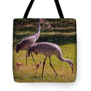 All Family Tote Bag