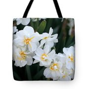 All In White Tote Bag