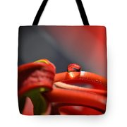 All Red Tote Bag