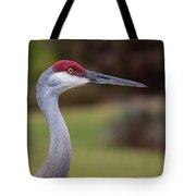 All-seeing Eye Tote Bag