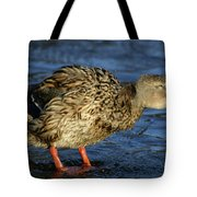 All Shook Up Tote Bag