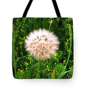 All Stages Represented Tote Bag