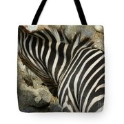 All Stripes Zebra 3 Tote Bag