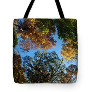 All The Trees Of The Forest Tote Bag