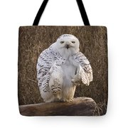 All Turned Around  Tote Bag