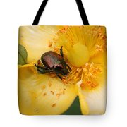 All You Can Eat... Tote Bag
