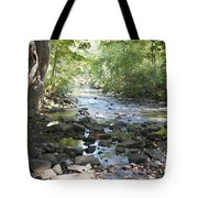 Allen Creek Tote Bag