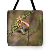 Allen Hummingbird In Flight Tote Bag