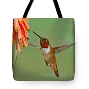 Allens Hummingbird At Flowers Tote Bag
