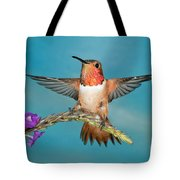 Allens Hummingbird Male Tote Bag