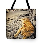 Alley Cat Siesta In Grunge Tote Bag by Meirion Matthias