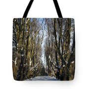 Alley In The Snow Tote Bag