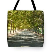 Alley Of Trees On A Summer Day Tote Bag