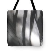 Alligator Creek Sunrise Shadows Tote Bag