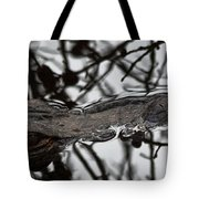 Alligator Eye Tote Bag