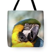 Alligator Farm Resident Tote Bag