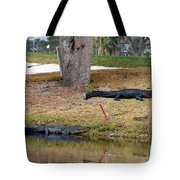 Alligator Hazard Tote Bag