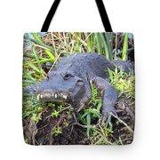 Alligator Overbite Tote Bag