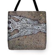 Alligator Skull Fossil 1 Tote Bag