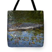 Alligator Swimming In Blue Water Tote Bag